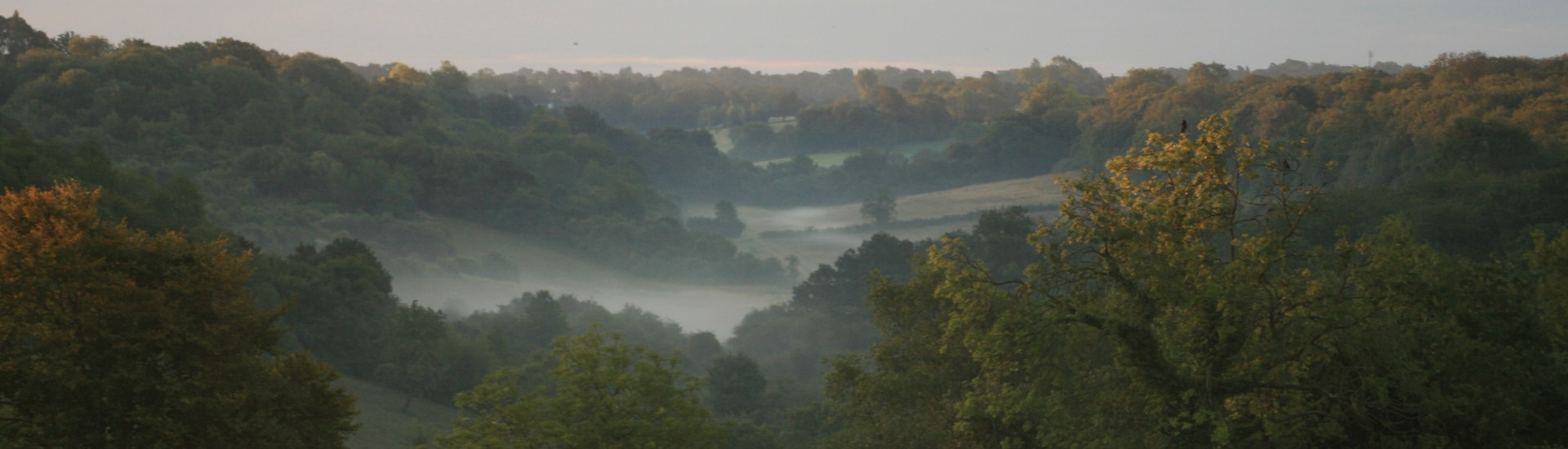 Looking into a misty Happy Valley at Dawn